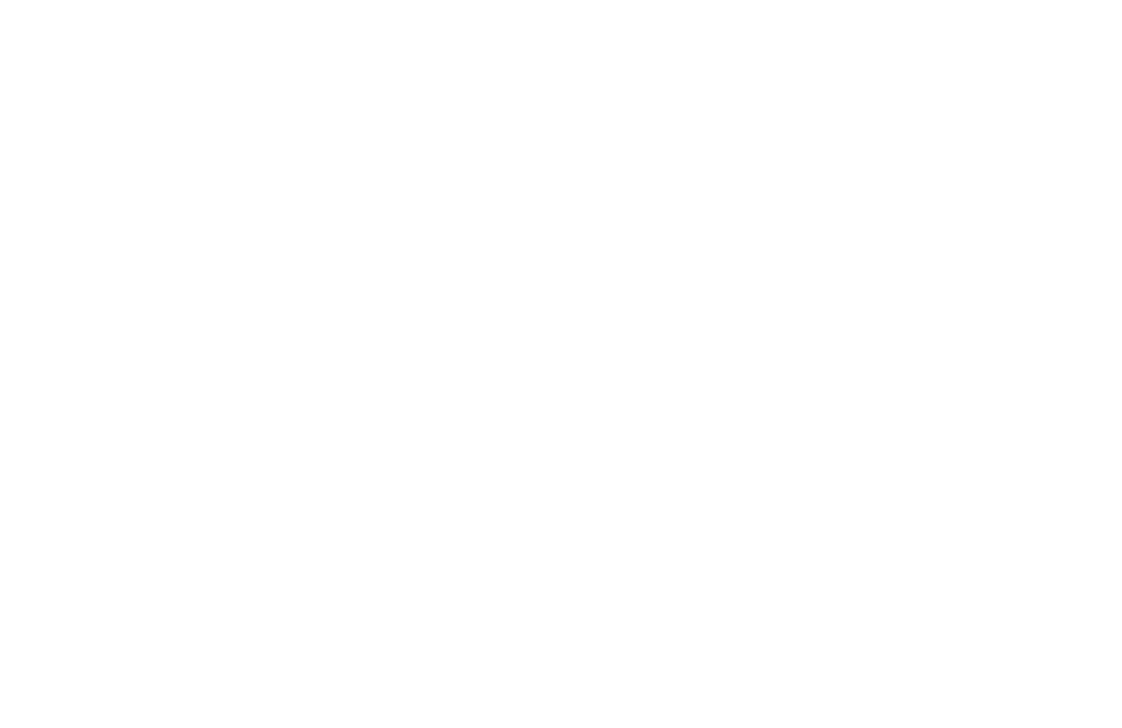 logo NXO evolution blanc