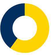 NXO : 40% technology distribution  60% services : integration (project management, development, deployment, training…) or managed services (support, supervision, metrology, outsourcing…)